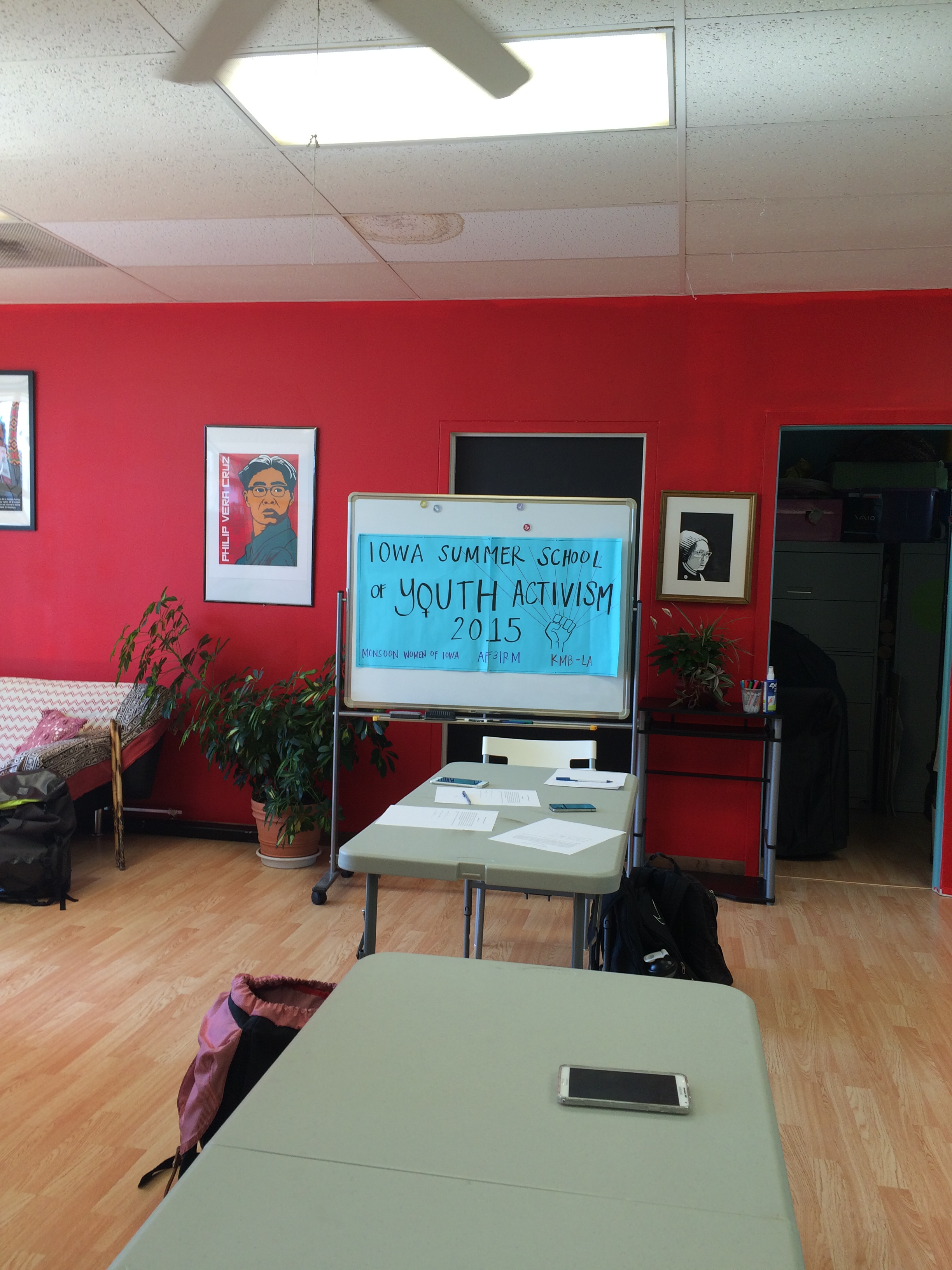 Summer School of Youth Activism